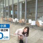 岡副麻希(色黒女子アナ)がノーパンで天気予報をしてしまう放送事故wwwwwwwwwww(画像あり)